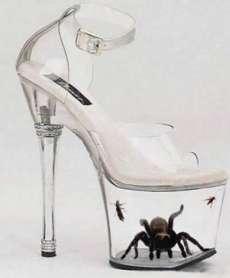 most-dangerous-shoe-in-the-world-tarantula-shoe